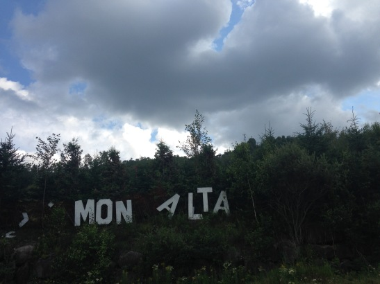 Mont Alta